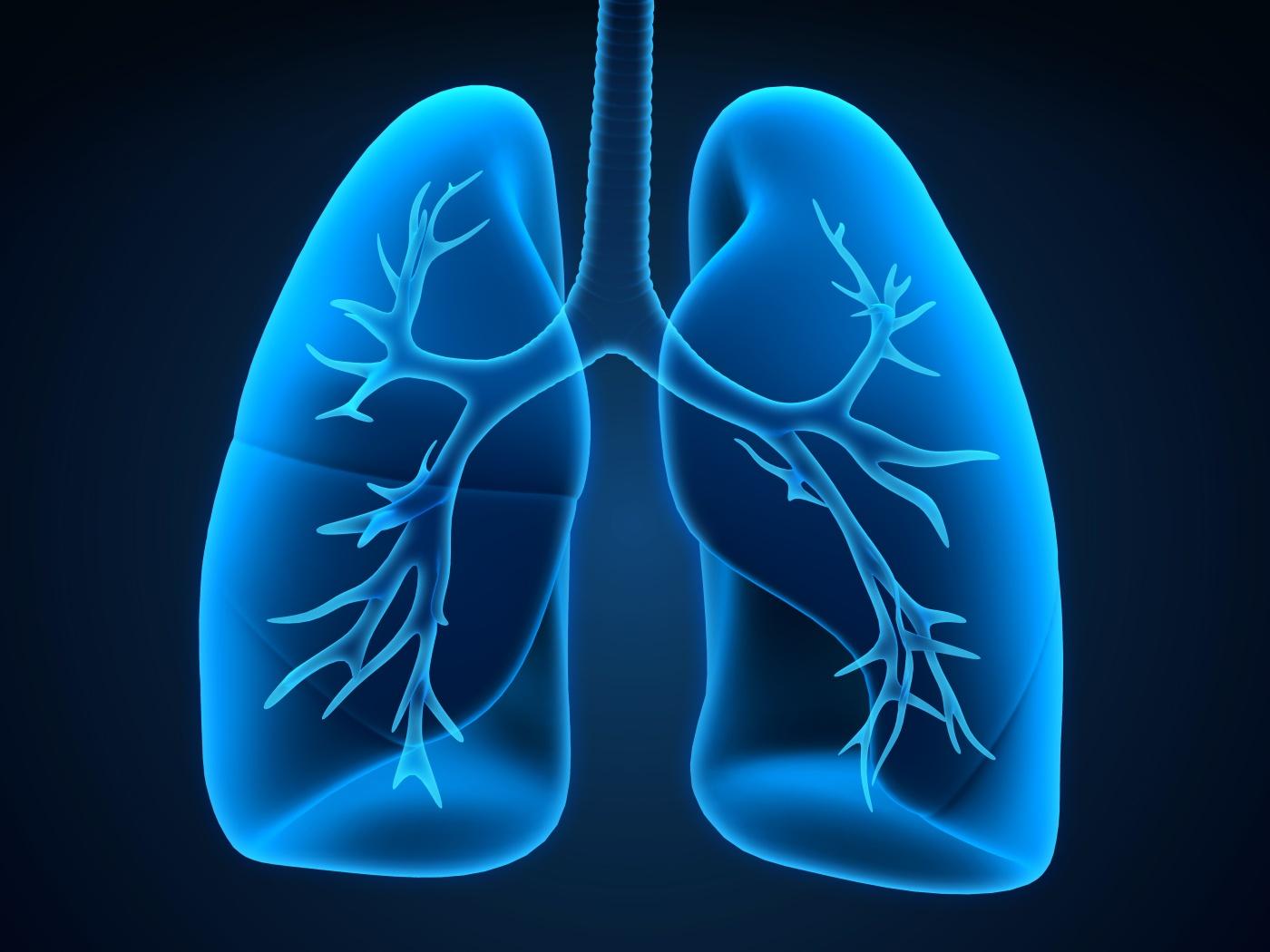 Три добавки за укрепване на здравето на белите дробове